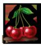 Meggy gyümölcslé 5L