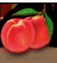 Őszibarack gyümölcslé 5L